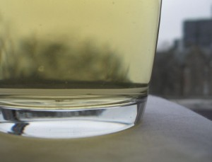 brewed echinacea tea 300x229 Echinacea Tea